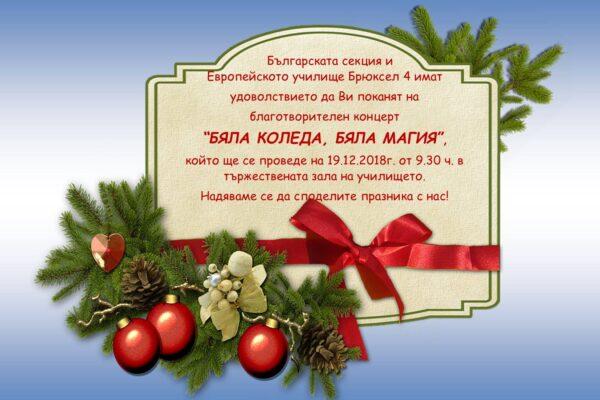 """Българската секция на Европейското училище в Брюксел подкрепя """"Надежда за малките""""."""